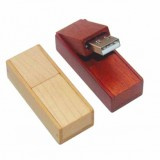 Special Design Wooden USB Flash Drive